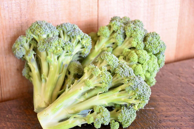 Broccoli  | Tangerini's Own