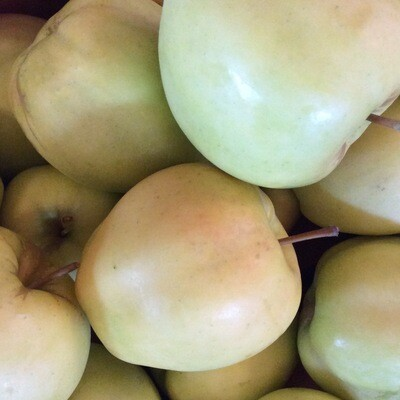 Apples | Pound | Locally Grown