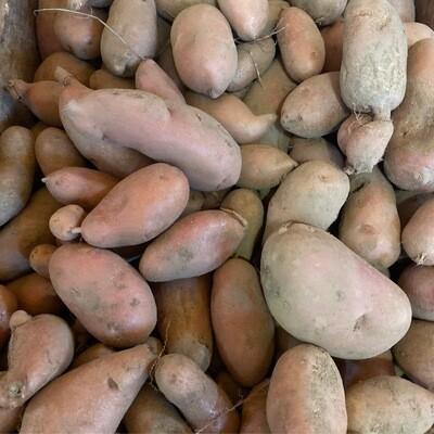 Fingerling Potatoes | Pound | Tangerini's Own