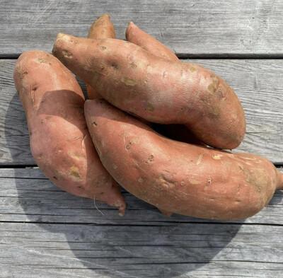Sweet Potatoes | Pound | Tangerini's Own