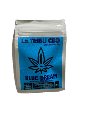 Flor HighBranch - buBlue Dream - La Tribu CBD