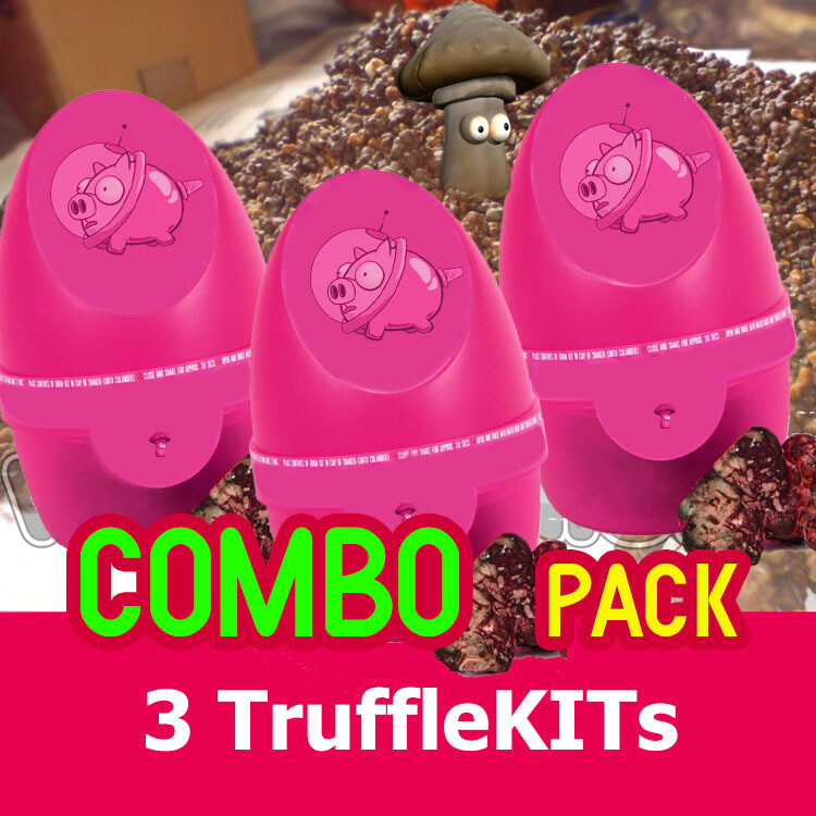 潘多拉魔盒-COMBO Pack(3 bx。)