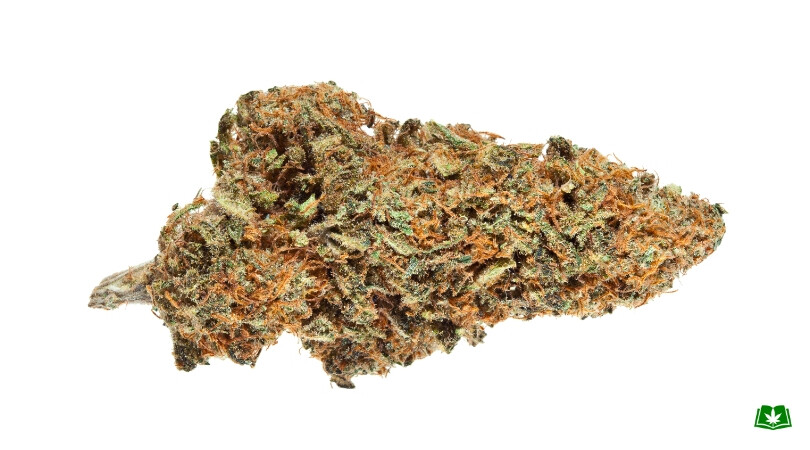 Harlequin 10% THC 15% CBD