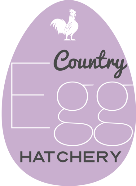 Country Egg Hatchery | Exotic & Rare Chickens