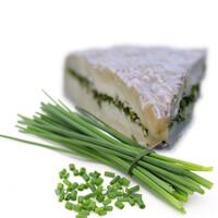 Brie cebollino