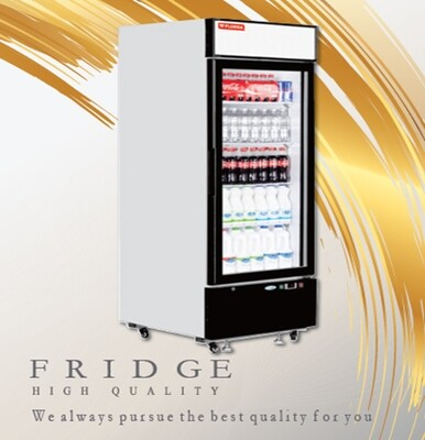 VS-338 FLORSA Vertical showcase freezer