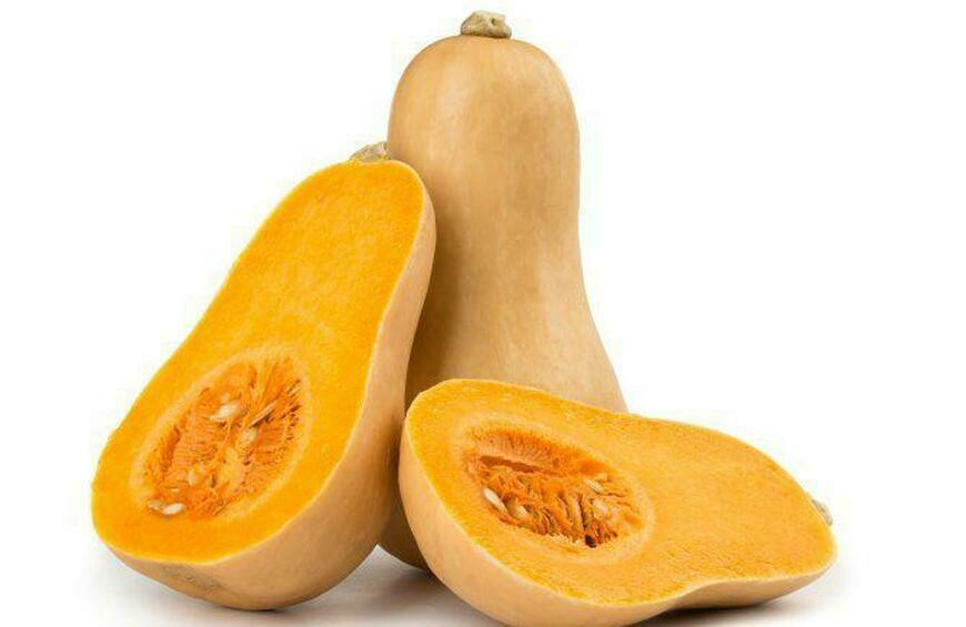 Butternut Squash /pc