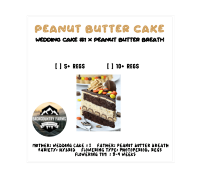 *CLEARANCE* Peanut Butter Cake *CLEARANCE*