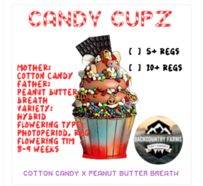 **SOLD OUT** Candy Cupz ***SOLD OUT***