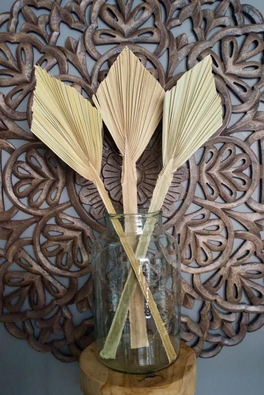 Large Palmspear