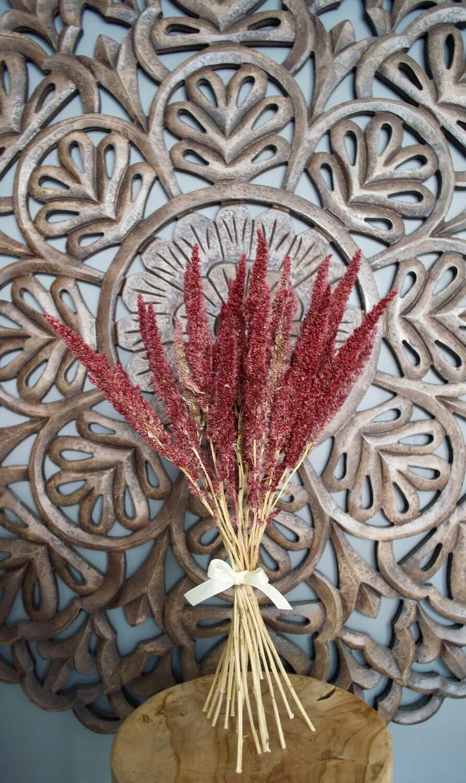 Dried Amaranthus Bunch