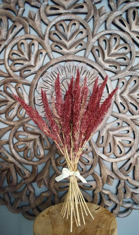 Dried Amaranthus Bunch
