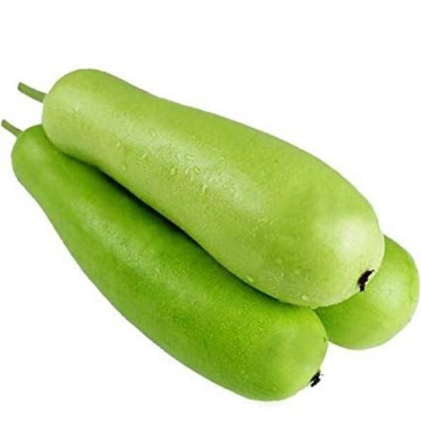 FRESH BOTTLE GOURD 650GM - 700GM(Delivery in BRUSSELS AND GENT ONLY!)