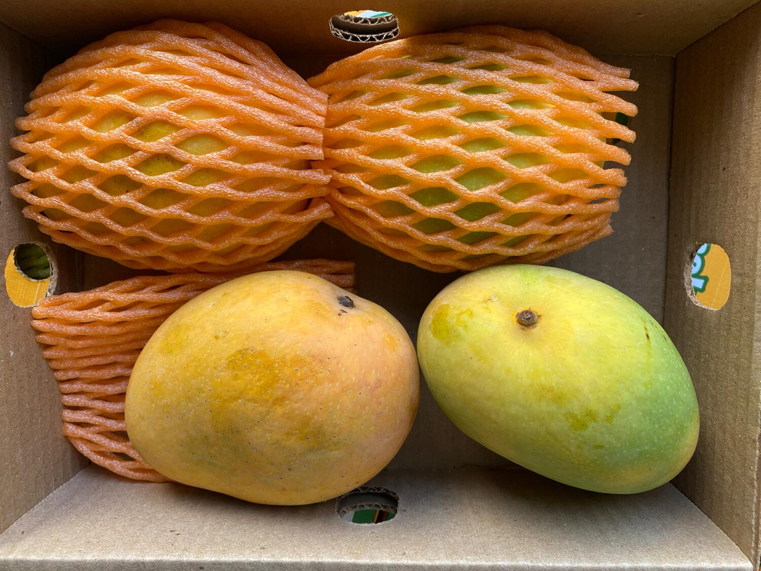 FRESH INDIAN BANGANAPALLI (BADAMI) MANGO 1,3 - 1,5KG