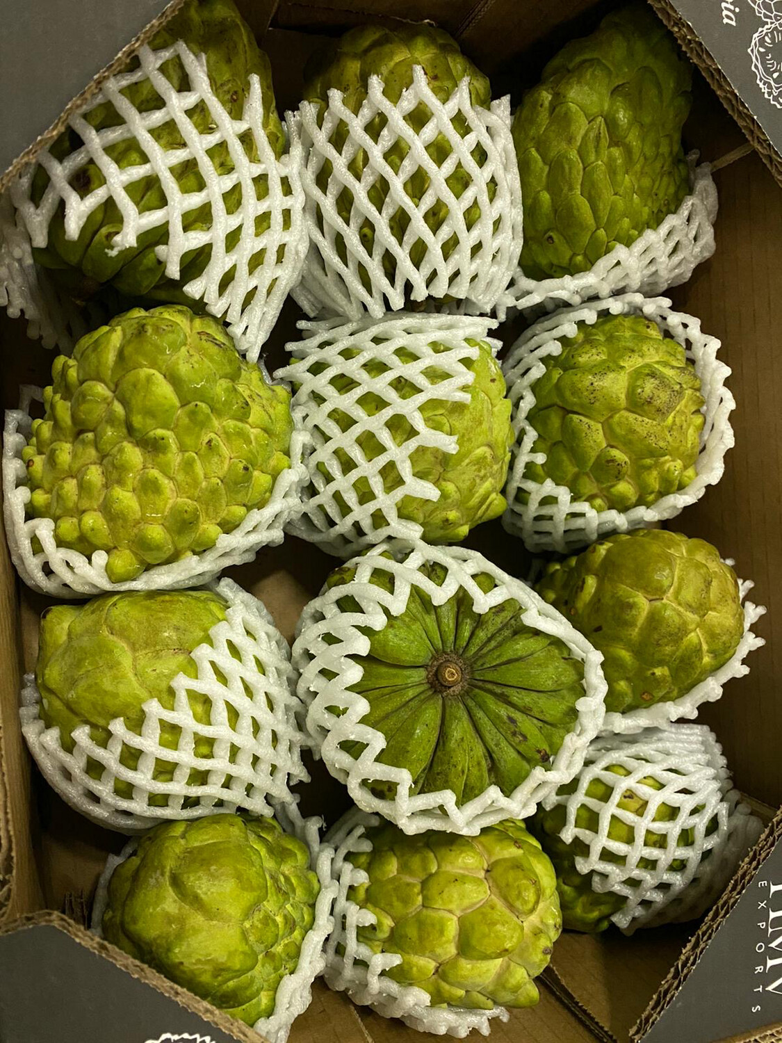 FRESH CUSTARD APPLE APPROXIMATELY 350GM-450GM (Delivery in BRUSSELS, GENT & MECHELEN ONLY!)