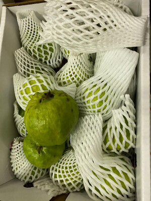 FRESH INDIAN GUAVA APPROXIMATELY 300GM-400GM