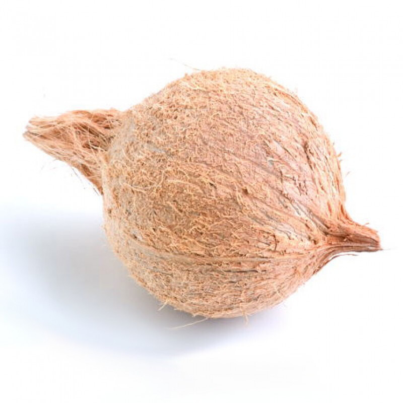 COCONUT FOR POOJA