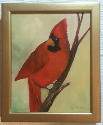 Cardinal in the Golden Light