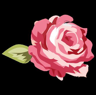 Dona Rosa Acessórios