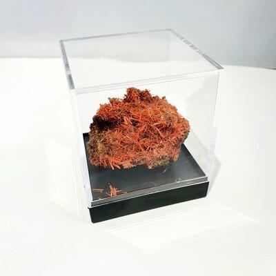 Crocite Specimen