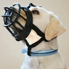 Baskerville Ultra Dog Muzzle, Black