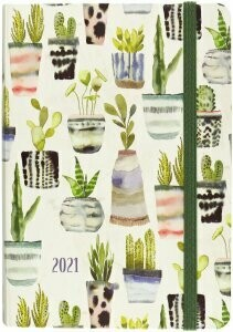 2021 Planner with Succulents