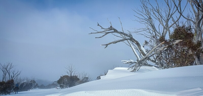 Thredbo snowdom