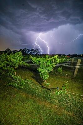 Branxton Storms