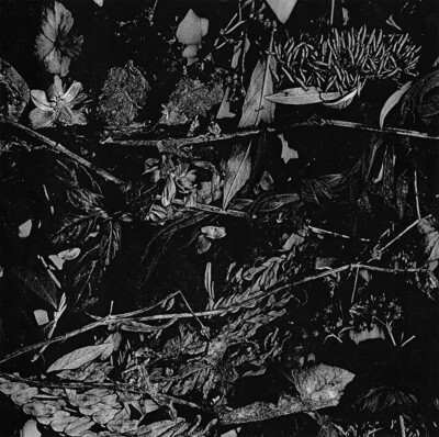 TURIA (NL) 'Dede kondre'  [LP]