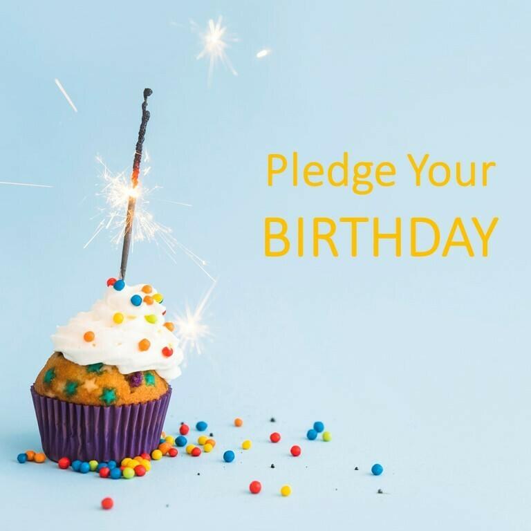 Pledge Your Bithday 30