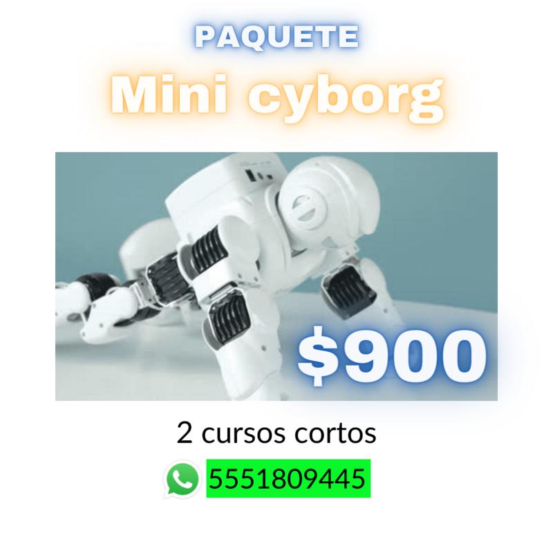 Paquete Mini Cyborg