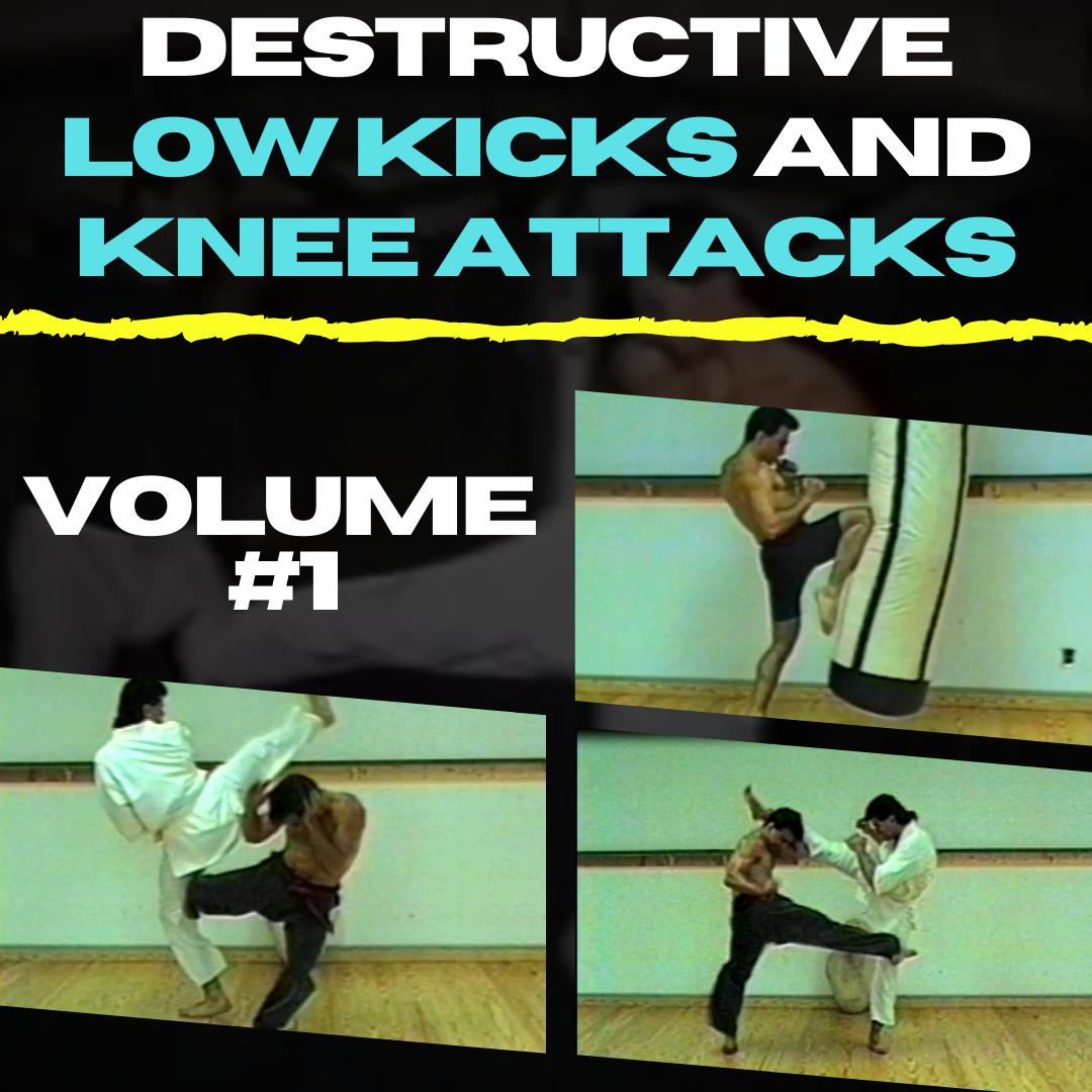 Destructive Low Kicks and Knee Attacks Volume #1