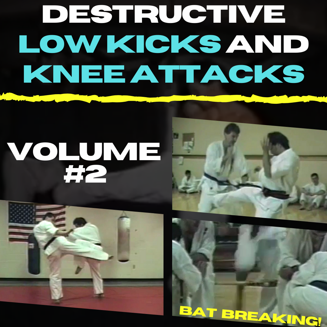 Destructive Low Kicks and Knee Attacks Volume #2