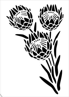 A4 Stencil Protea 1