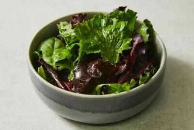 Green Leaf Salad (V)(GF)