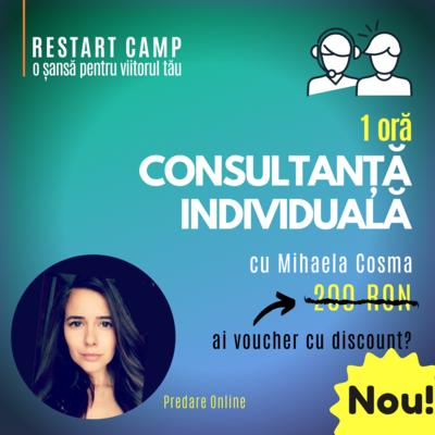 1 ora de consultanta individuala cu Mihaela Cosma