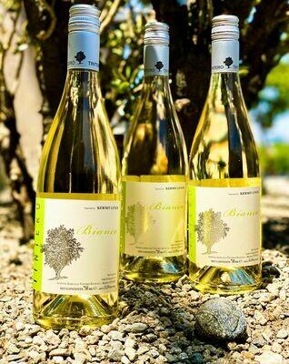 Elvio Tintero Vino Bianco