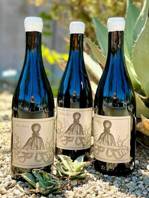 Holus Bolus Syrah Presquile Vineyard