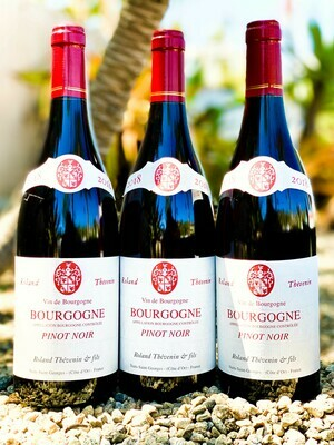 Roland Thevenin Bourgogne Rouge