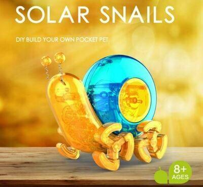 Robot Stem Solar Snail