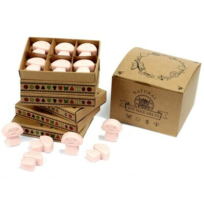 Box of 6  Wax Melts - Old Ginger candles