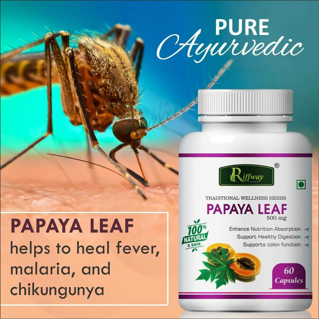 Papaya Leaf Herbal Capsules For Treats Dengue And Malaria 100%