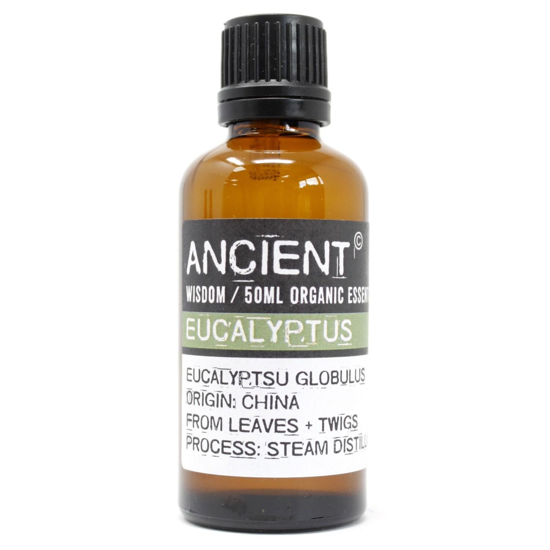 Eucalyptus Organic Essential Oil 50ml