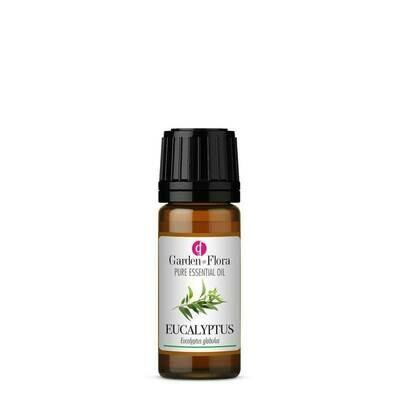 Eucalyptus Pure Essential Oil (10ml)