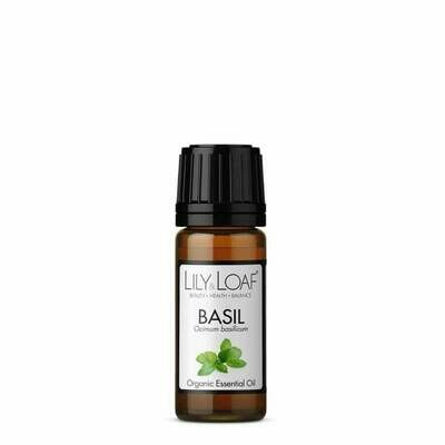 Basil Organic Essential Oil (10ml)