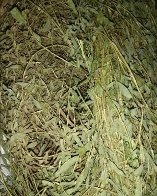 Jamaican Medina herb  70g