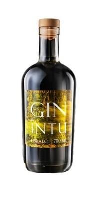 GIN INTU