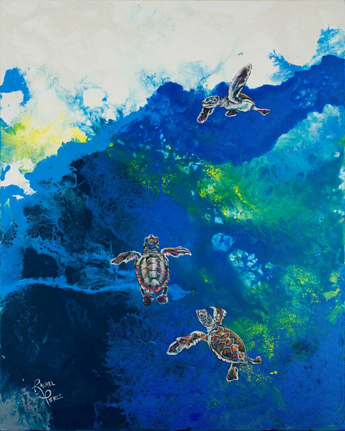 Hatchlings Swimming print