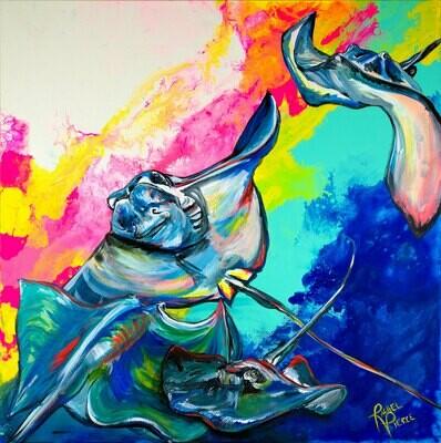 Rainbow Stingrays