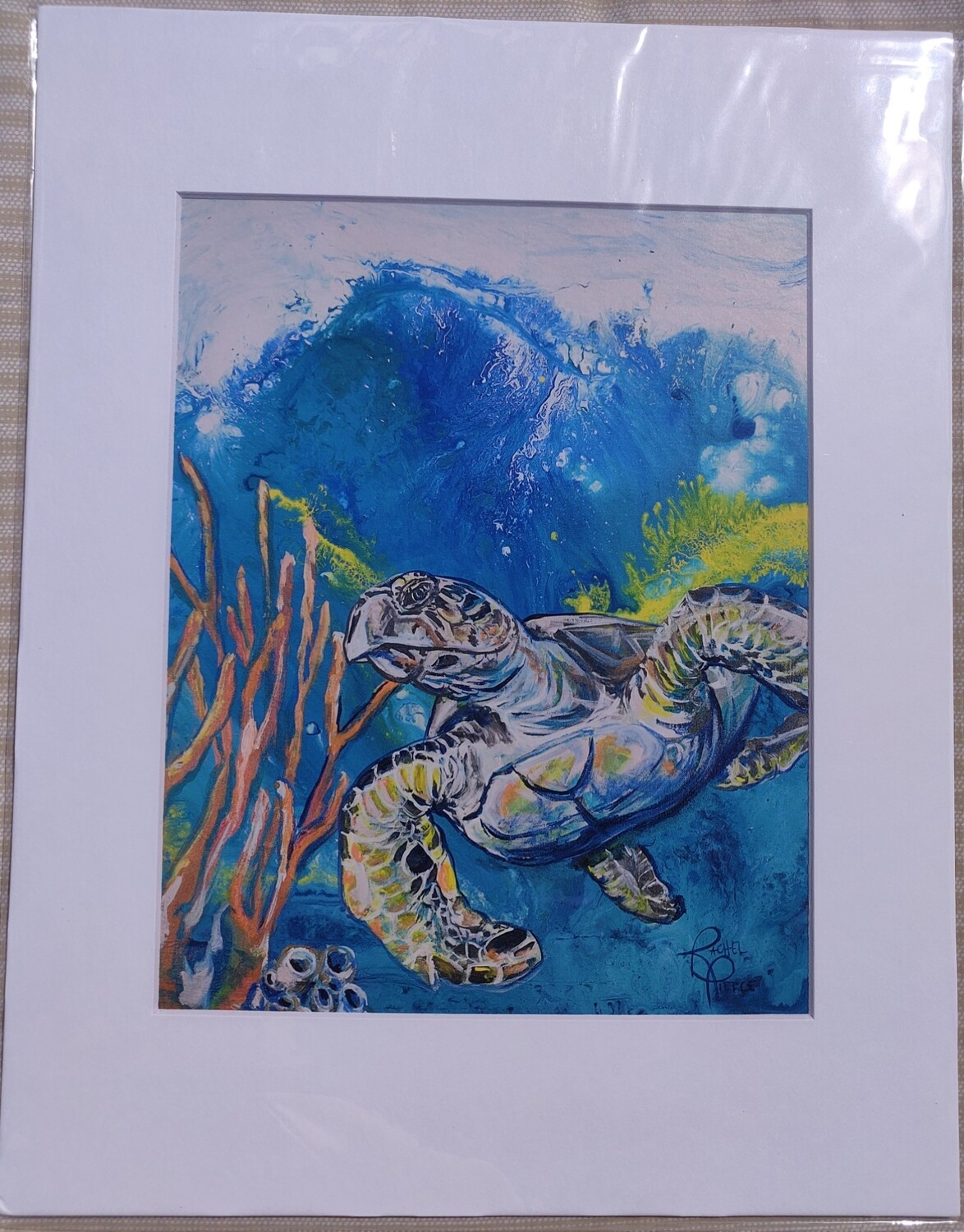 Solo Hawksbill Matted Print